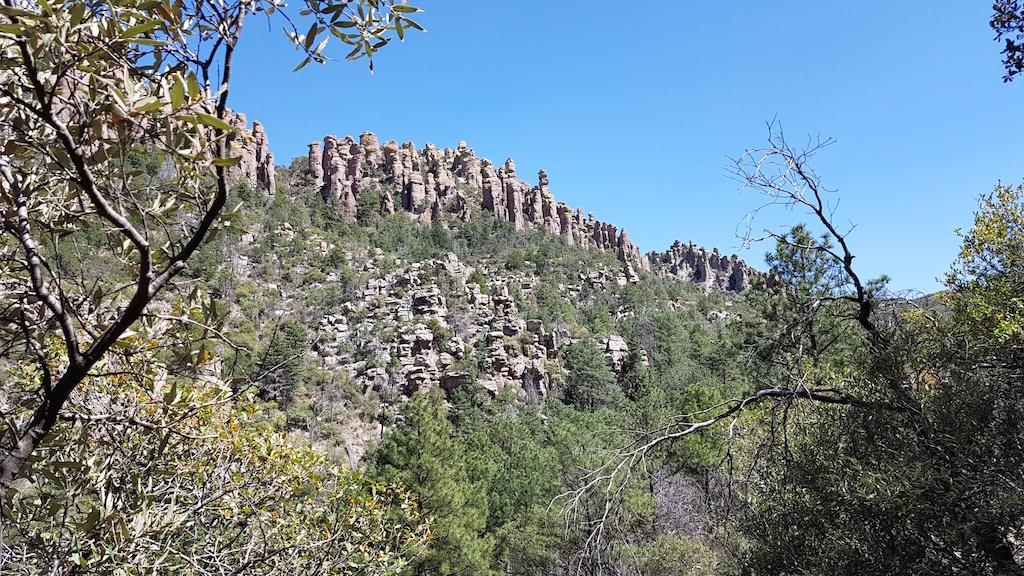 Chiricahua view